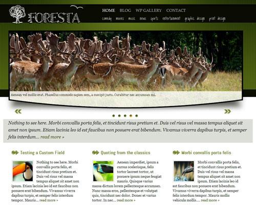 Foresta Free Wordpress Theme
