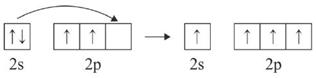 ion senyawa NH4