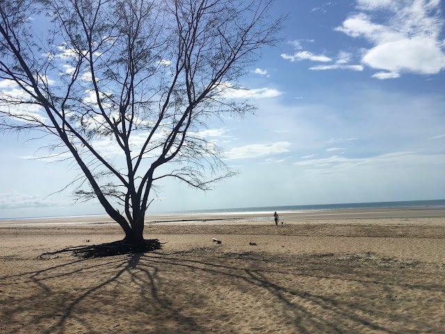 Lee Point Beach, Darwin