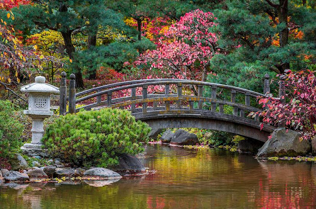 Buy Canvas Print of Japanese Bridge