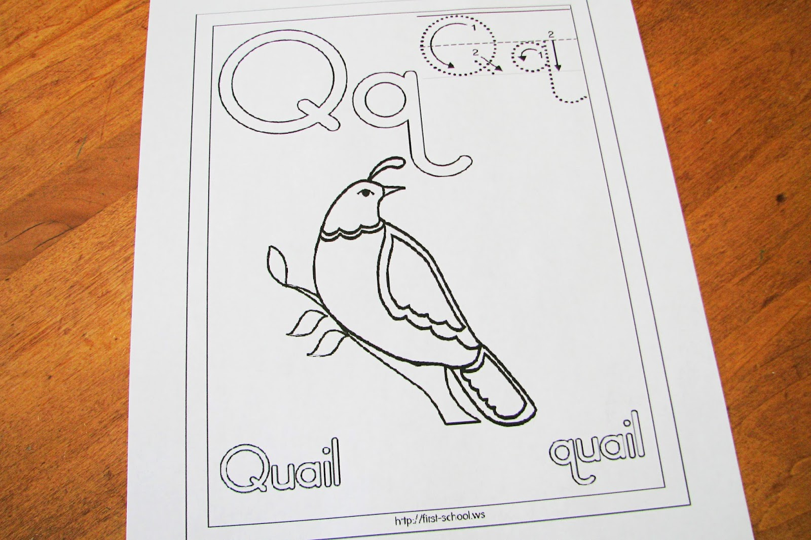 Mommy S Little Helper Letter Q Quails Preschool Theme
