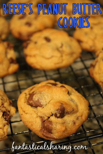 Reese's Peanut Butter Cookies | Soft peanut butter cookies with chocolate chips and Reese's cup bits throughout! #cookies #dessert #chocolate #Reeses #recipe