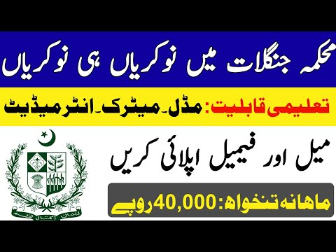 Jobs in Forest and Wildlife Department 2020 for Male and Female