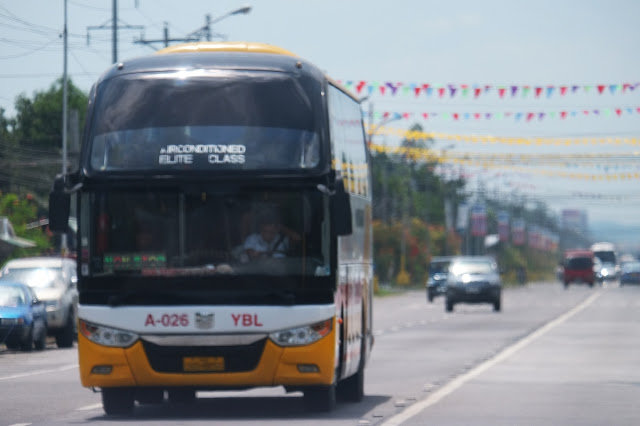 Yellow Bus releases trip schedule for New Year's Day