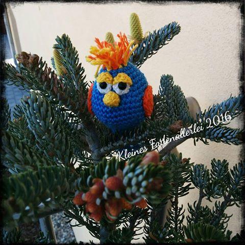kleines fadenallerlei: blauer paradiesvogel gelandet