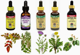 Natural Remedies Acid Reflux In Dogs