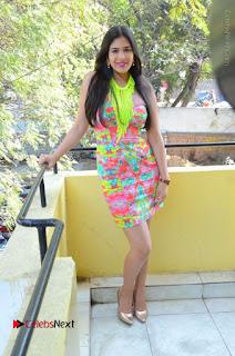 Telugu Actress Prasanna Stills in Short Dress at Inkenti Nuvve Cheppu Press Meet Stills  0184.JPG