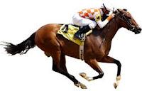 https://4.bp.blogspot.com/-LZ-pH3p7sT8/WJXGzxn_kWI/AAAAAAAAAAM/wXkimF6Mxdo5Cx8L4EBnVRi2A0b5mLkgQCLcB/s1600/cheval.jpeg