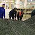 رمضان کی تیاریاں: مسجدنبوی میں صفائی پسندسبز قا لین بچھادئے گئے