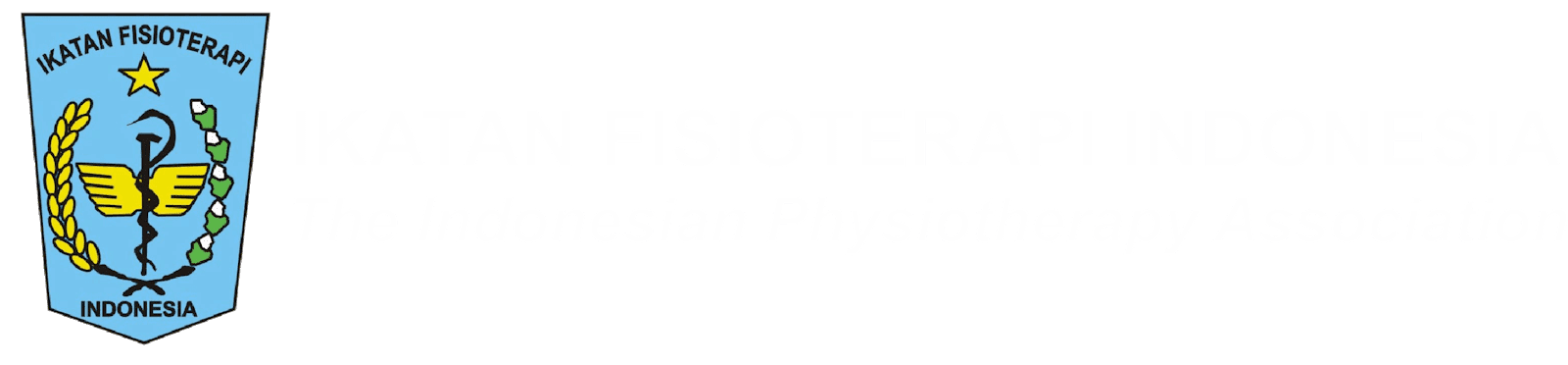 Ikatan Fisioterapi Indonesia | Indonesian Physiotherapy Association