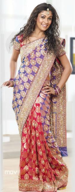 Nayantara Saree Photo Shoot