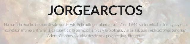 JorgeArctos