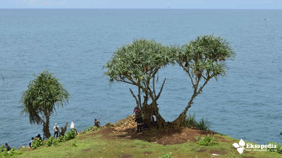 Memancing Ikan Di Pantai Selatan