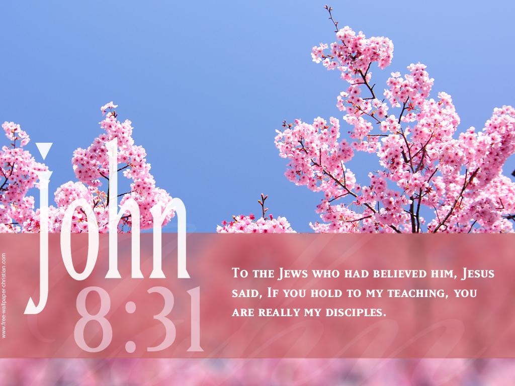 Bible Quotes Best Friend Quotes