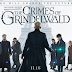 'Fantastic Beasts: The Crimes of Grindelwald' Fantastic Movie - Steve's Review