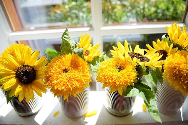 DIY Blumenschaukel bauen
