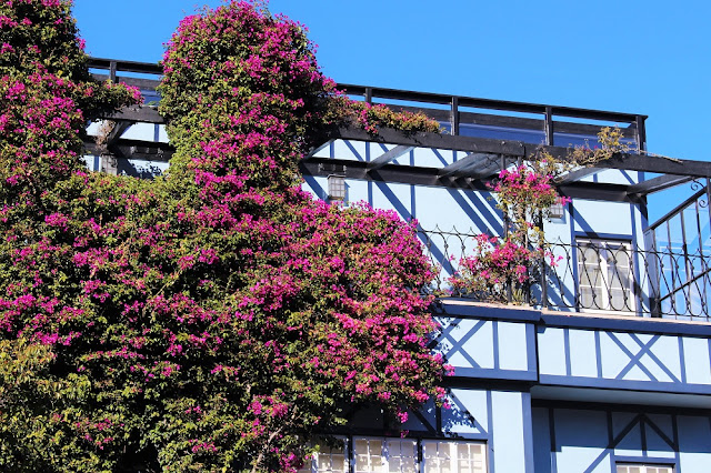 Lombard Street, San Francisco - California travel blog