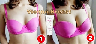 Tetimoni pemakaian vienna breast