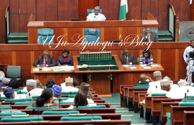 House of Representatives in rowdy session over South-East development commission
