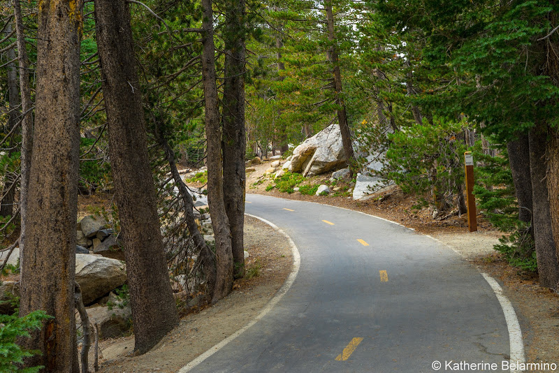 Mammoth Bike Path Things to Do in Mammoth in Summer