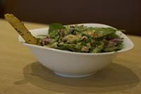 saladstop (ransel-dini)