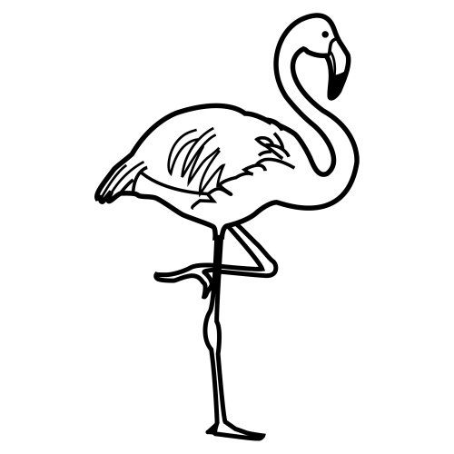 Flamingo dibujo imagui for Flamingo coloring pages