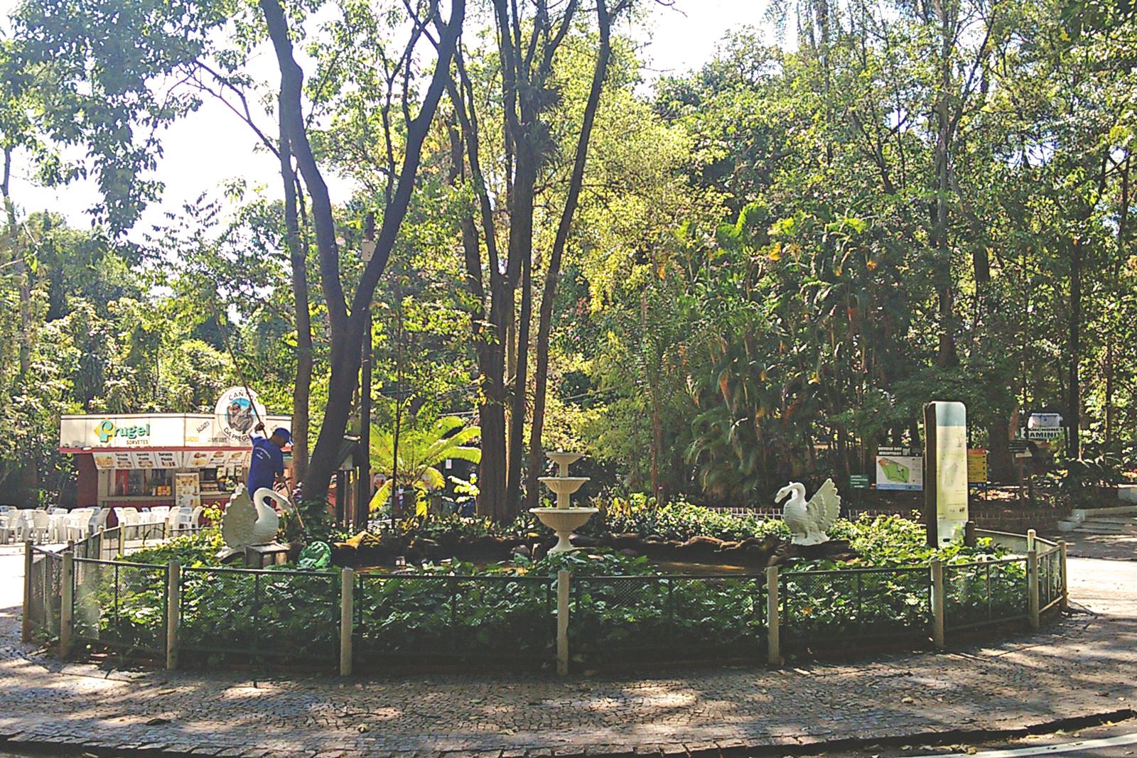 bosque dos jequitibas campinas
