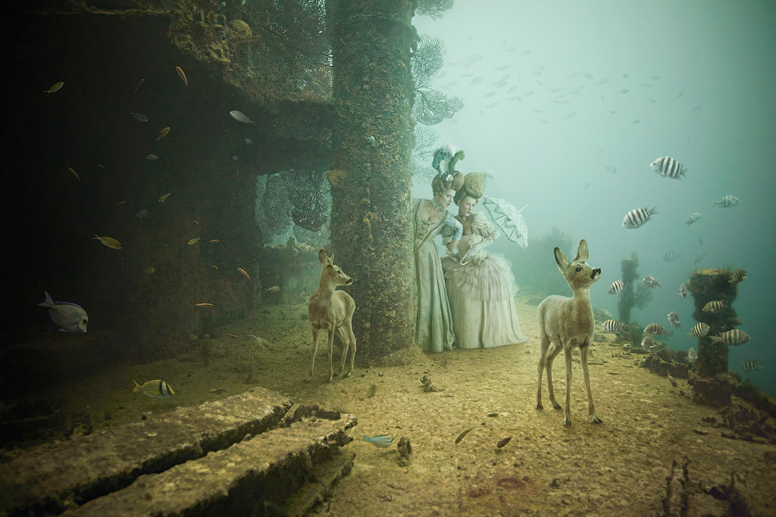 06-Andreas-Franke-Surreal-Artificial-Reef-Photography-www-designstack-co