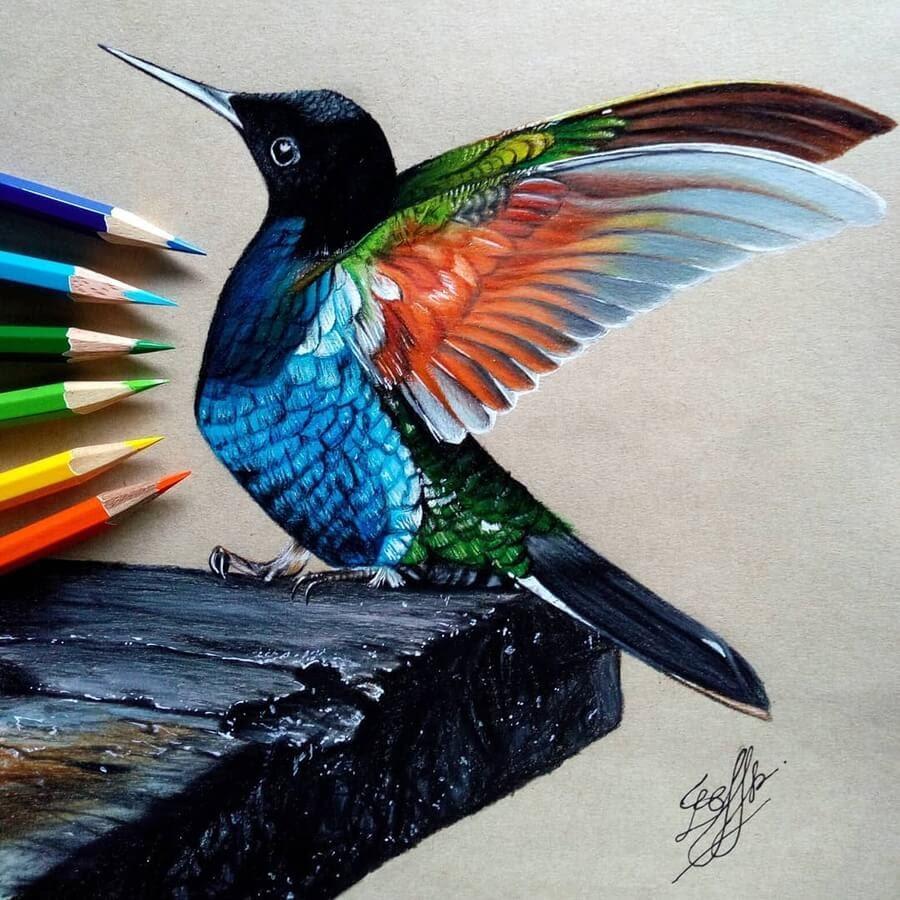 05-Bele-Birds-Drawings-www-designstack-co