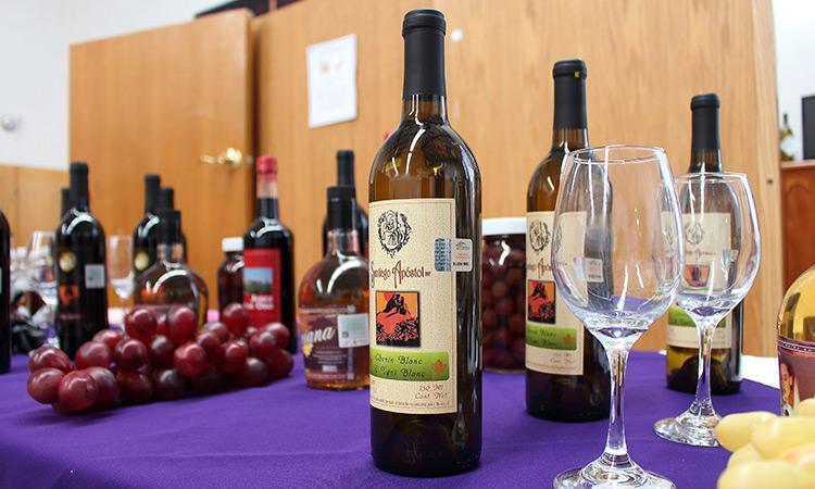 c69885d14e0a2 Onde comprar vinhos em Santiago do Chile