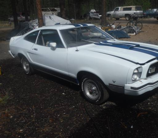 daily turismo cheap snake 1976 ford mustang cobra ii 1976 Ford Mustang Cobra save your money for the honeys or something find this 1976 ford mustang cobra offered for 4 988 near spokane wa via craigslist tip from gianni