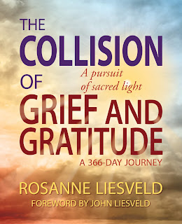 Writing Advice, Guest post by Rosanne Liesveld @iReadBookTours