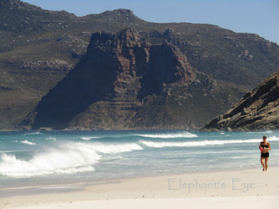 The Sentinel at Hout Bay