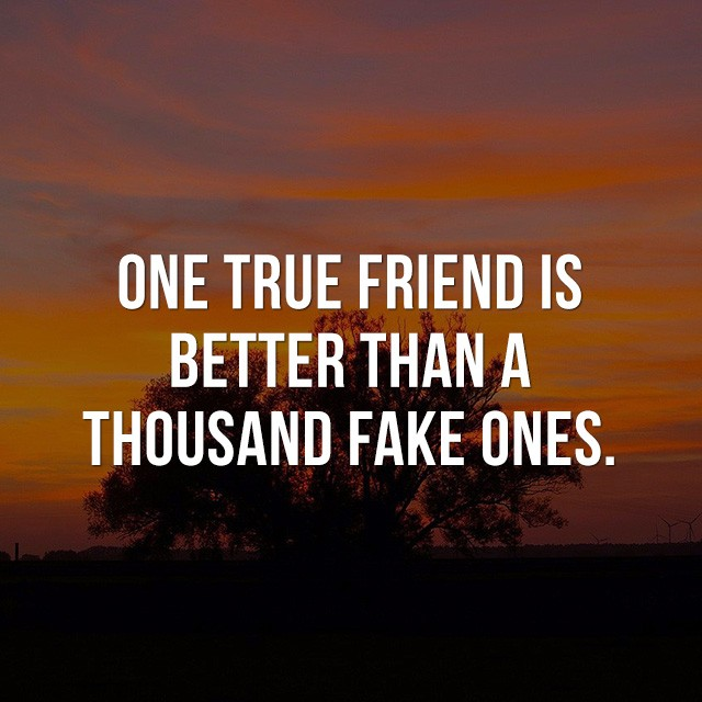 One true friend is better than a thousand fake ones. - Inspirational Messages
