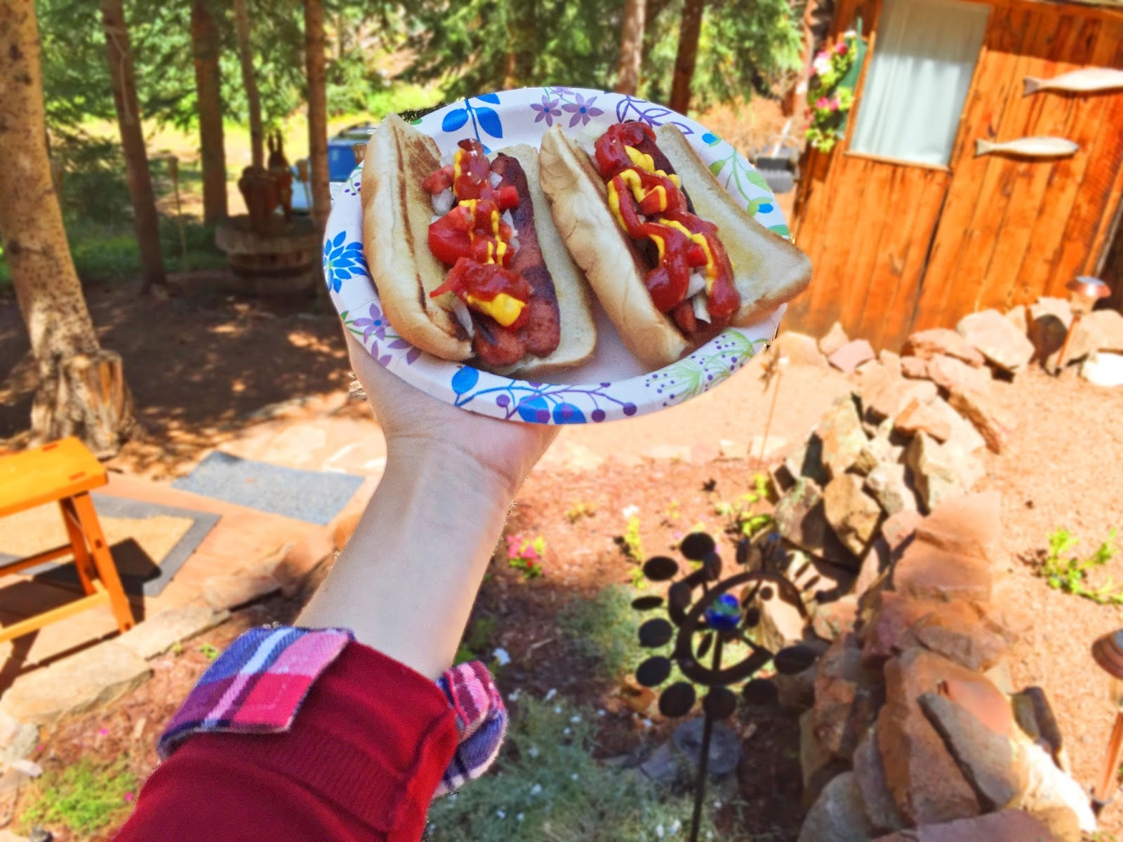 Delicious hot dogs by the Cabin
