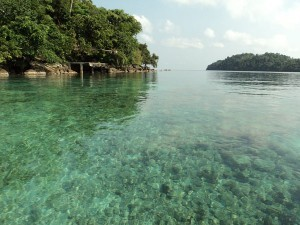 See 14 beauty of sea biota of Rubiah Aceh island, Indonesian tourism