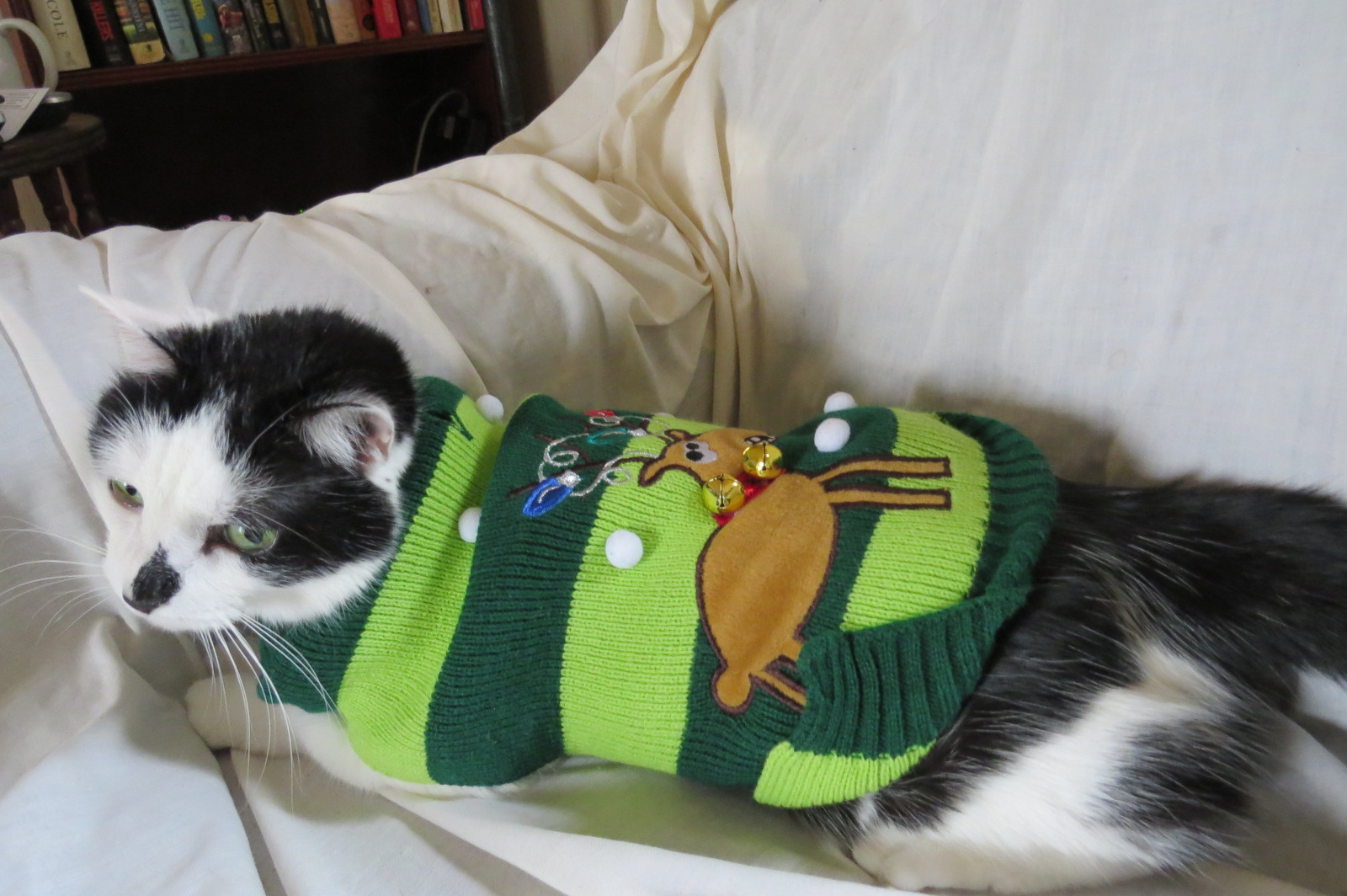 Margs Animals: Christmas Sweater.