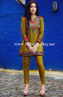 73220d4347fb Ready To Wear Winter Women Clothes 2016 By Nimsay