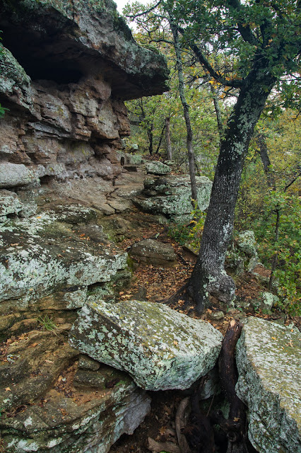 Penientiary Hollow, Lake Mineral Wells State Park