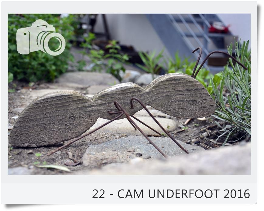 22 cam underfoot aus dem hochbeet. Black Bedroom Furniture Sets. Home Design Ideas