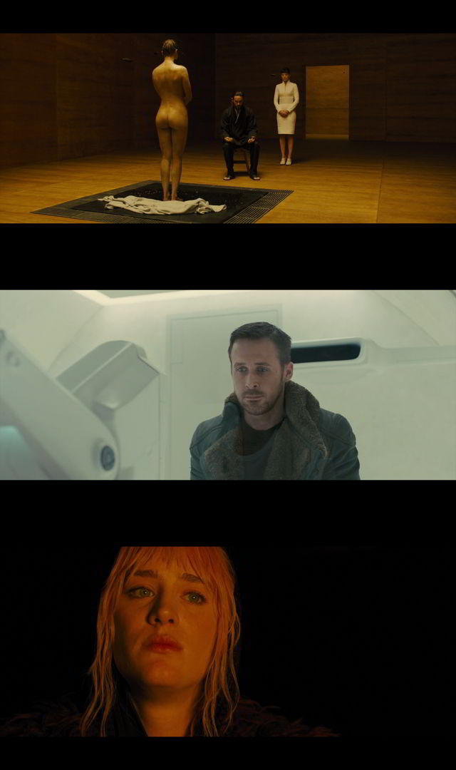 Blade Runner 2049 (2017) HD 1080p y 720p Latino
