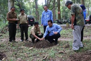 Wabup Blora Arief Rohman Tanam Kelor Di Tegakan Jati Perhutani Kebonharjo 2