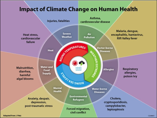 Climate change health effects wheel graphic