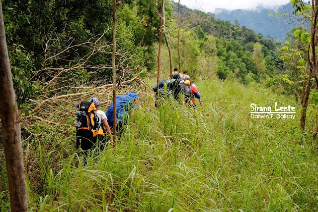 2020 Mount Tarak