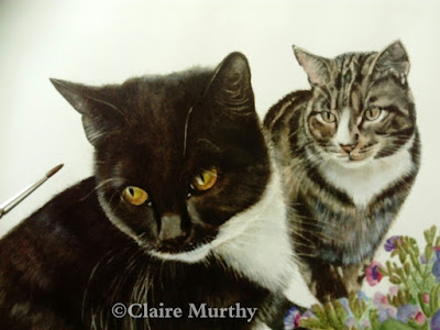 pet portrait cats watercolour