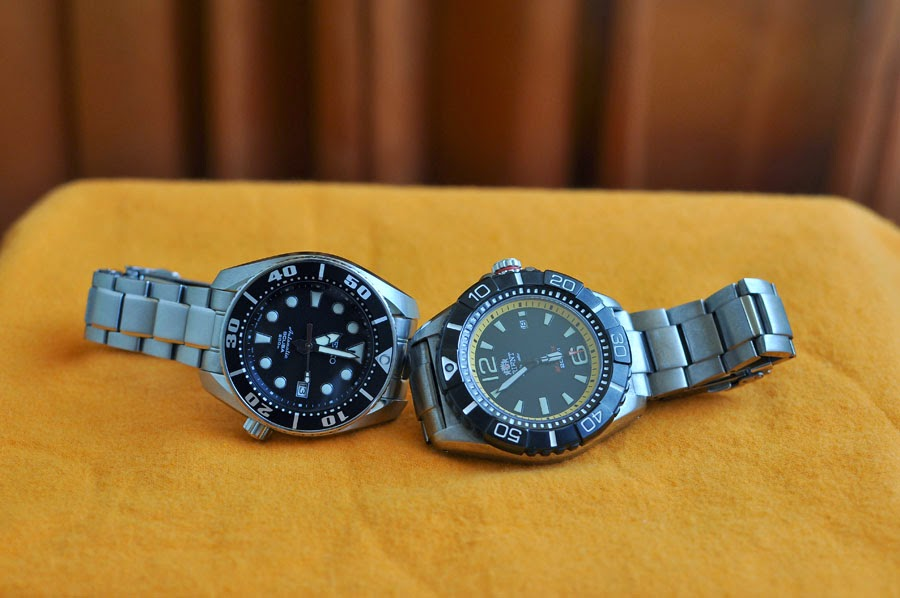 Orient M-Force Beast Watch Watchstrap by