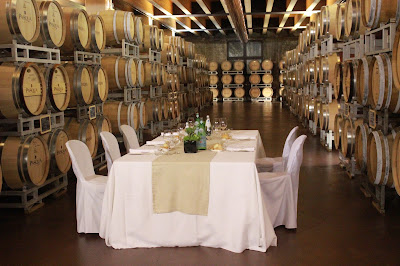 Wine dinner in the wine cellar of Pasqua