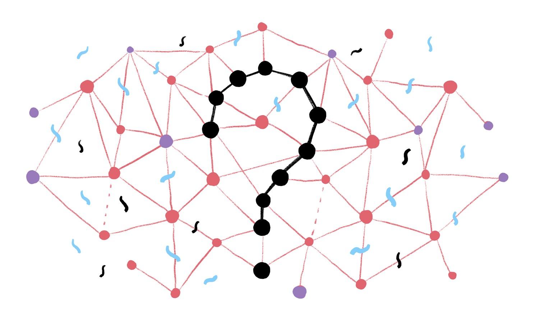 Pengertian Notasi Dan Studi Kasus Algoritma Pokoke Share