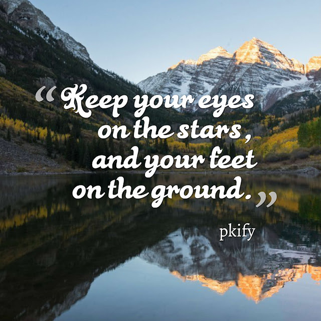 Keep Your Eyes on the Stars and Your Feet on the Ground Motivational Quotes
