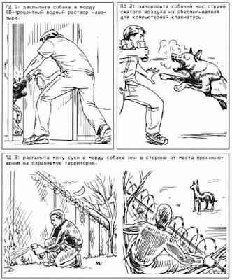 Чем обезвредить собаку - остановить нападение собак